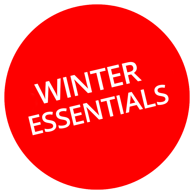logo for Winter Essentials