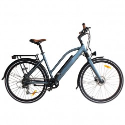 Category image for Electric Bike