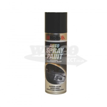 Image for Holts Dark Grey Spray Paint 300ml (HDGREY01)